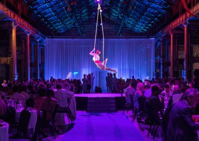 Aerial artist at event