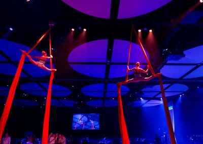 Aerial Act at Crown Casino Perth